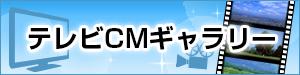 東建コーポレション(株)テレビCM